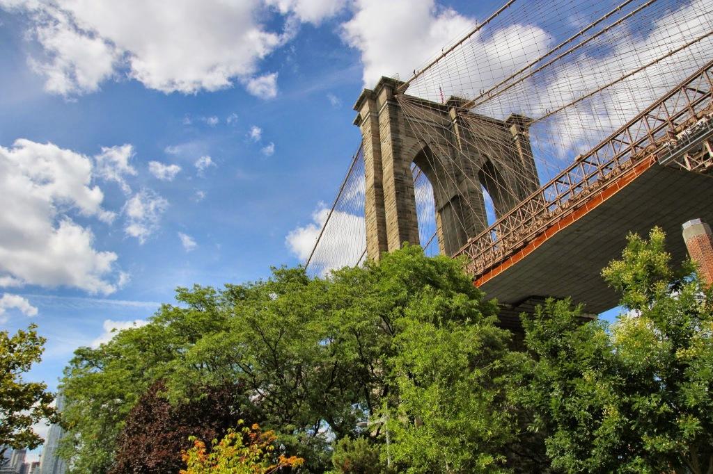 Brooklyn (49)