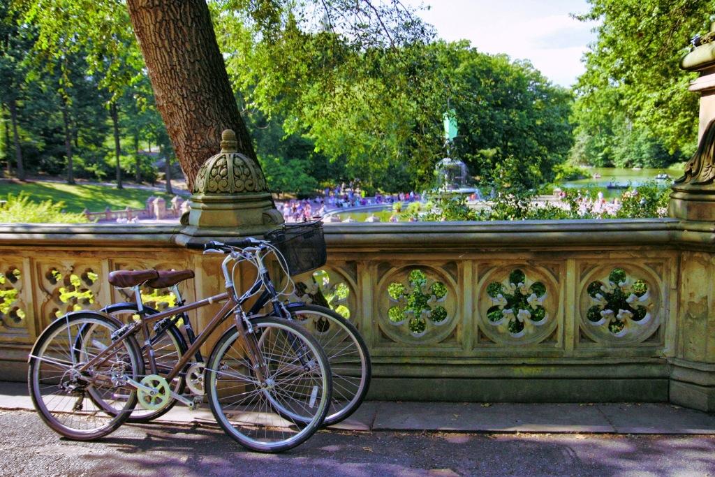 Central Park (67)
